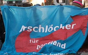 AfD Protest-Aloecher